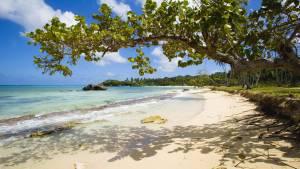Playa Rincon - 10 Lugares románticos de República Dominicana