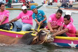 3 Fiestas más crueles en las que son maltratados animales