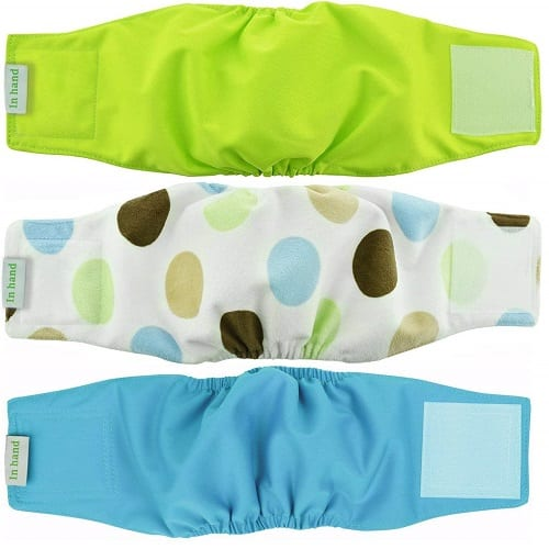 Top 10 Best Dog Diapers in 2018 Reviews