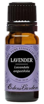 Best Lavender Oils Reviews