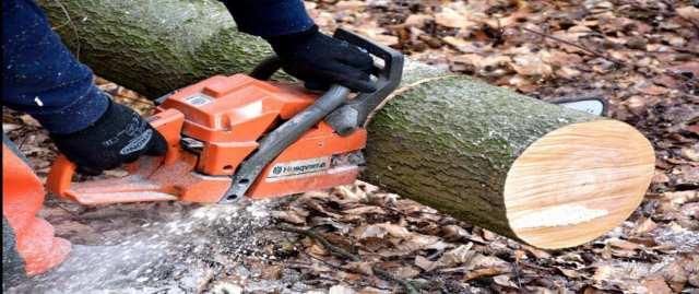 best chainsaws