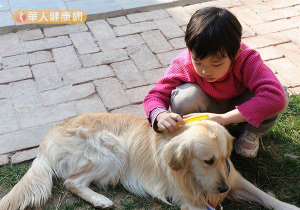 狗寶貝老了嗎?毛孩有這7癥狀要注意!   華人健康網