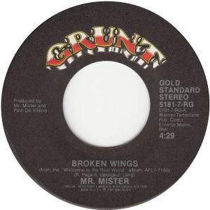 mr-mister-broken-wings-grunt