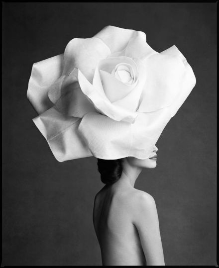 #4 Patrick Demarchelier Fine Art!