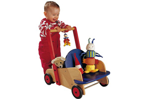 Best Baby Push Along Walker Reviews