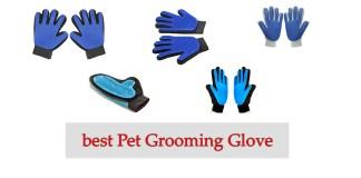 best Pet Grooming Glove Review