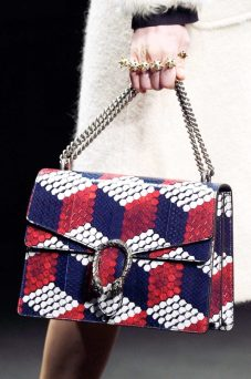 chain-strap-fall-bags-gucci