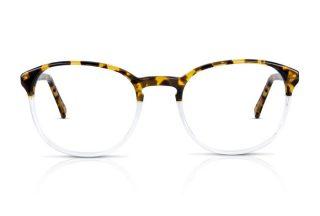 watson-tortoiseshell-honey-clear-eyeglasses