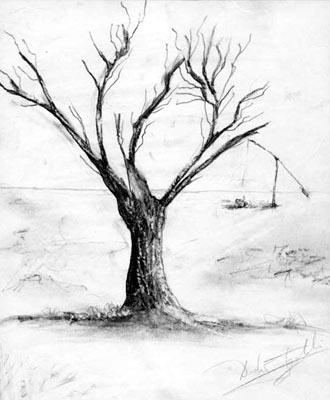 Tree Fine Arts Gallery Original Fine Art Oil Paintings