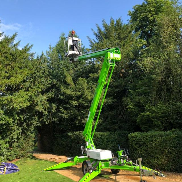 Toparia Summits - Hedge Maintenance - Services