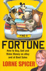 Find a fortune: how to buy, sell and make money on eBay and at boot sales by