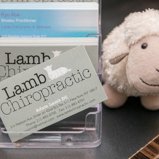 https://i1.wp.com/topchiropractornyc.com/wp-content/uploads/2015/12/Lamb_chiropractic_cards.jpg?resize=540%2C540