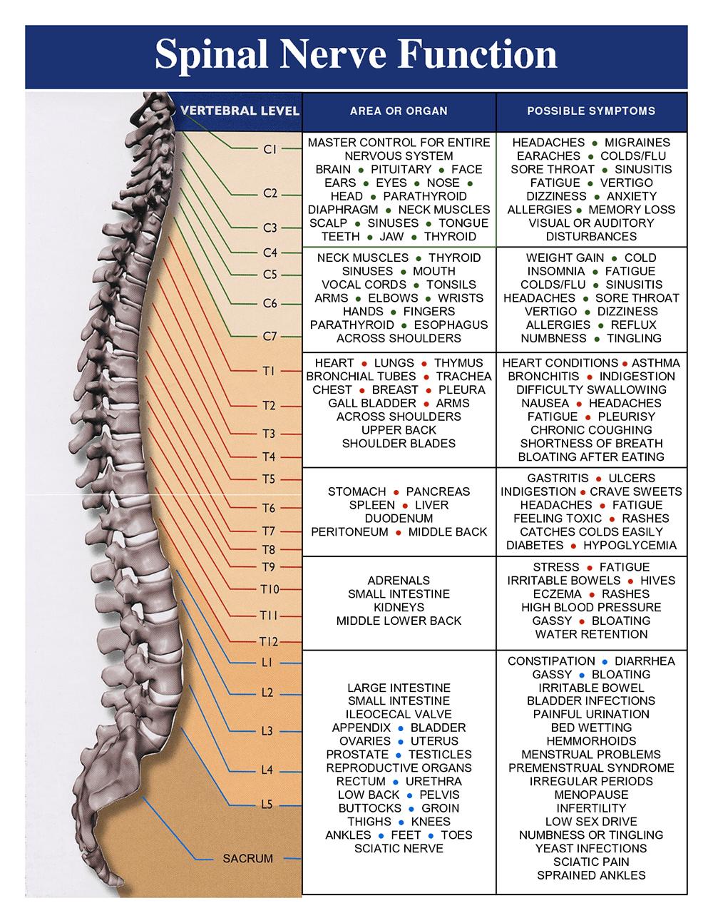 Meric Chart 2