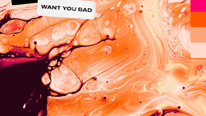 DOWNLOAD MP3: Punctual & KREAM - Want You Bad
