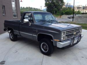 1987 Chevy Custom Deluxe for sale: photos, technical