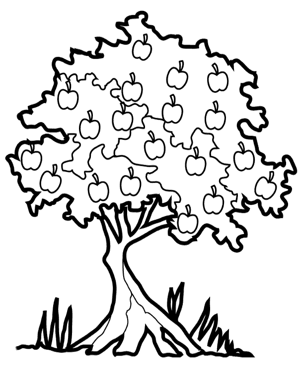 Picture of apple tree which you can print and color for ...