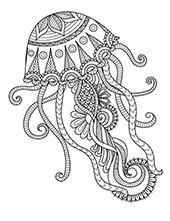Sea medusa