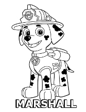Coloring sheets online