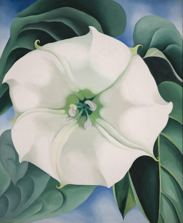 Georgia O'Keeffe. Estramonio. Flor blanca nº 1, 1932.