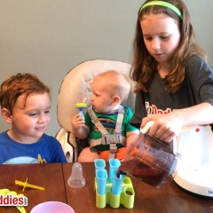 Healthy Blueberry Popsicles That Even Baby Can Have!