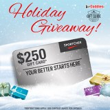 Holiday Giveaway     $250 Sport Chek Gift Card!