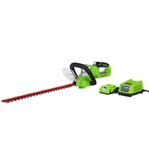 GreenWorks-22232-G-24-Li-Ion-22-Inch-Cordless-Hedge-Trimmer-with-2AH-Battery-and-Charger-0