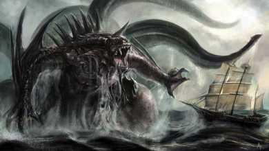 5. Kraken