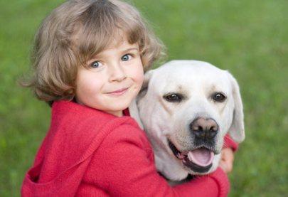 2.Labradorský retríver Pes k deťom