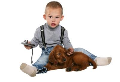 4.Írsky seter Pes k deťom