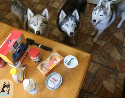 suroviny kolač s arašidovym maslom Recept pre psa