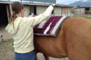 Umiestnite deku alebo podložku