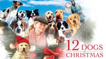 5. 12 vianočných psov