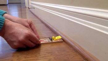 ako nastaviť pascu na myši zbaviť myší v dome