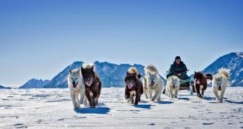 1. Grónsko