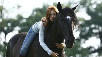 Vichr Filmy o koňoch : Top 10