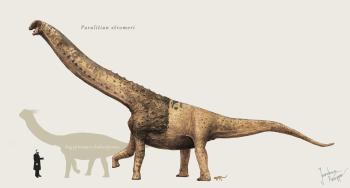 Paralititan Najväčší dinosaury na svete : 15 najväčších dinosaurov