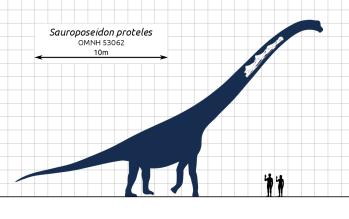 Sauroposeidon proteles Najväčší dinosaury na svete : 15 najväčších dinosaurov