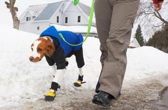 oblecenie a topanky pre psa