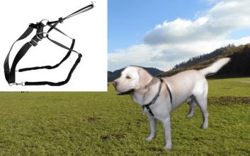 sťahovací postroj pre psa