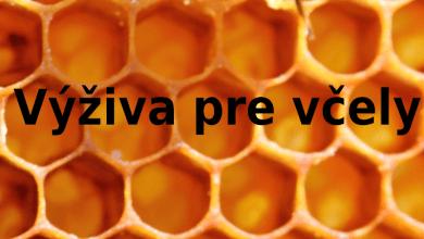 výživa pre včely
