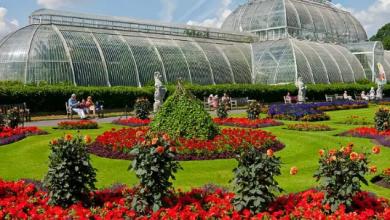 Kráľovská botanická záhrada, Londýn