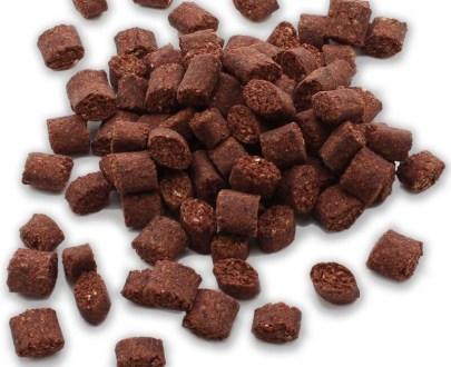 snacks-per-cani-proteina-insetti