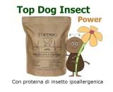 Crocchette per cani con insetti