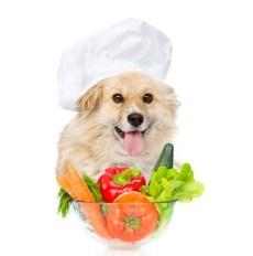 Best Natural Homemade Dog Food Recipes