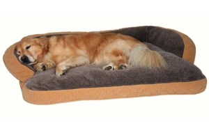 Top 5 Best Dog Beds that Last Forever