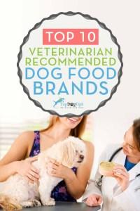 Von Tierarzt empfohlene Hundefuttermarken