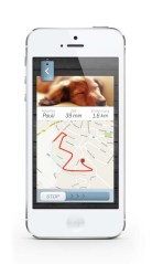 How Effective GPS Pet Trackers Really Are?