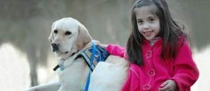 """Canada Proposing Dog """"Driver's License"""" to Stop False Service Dogs"""
