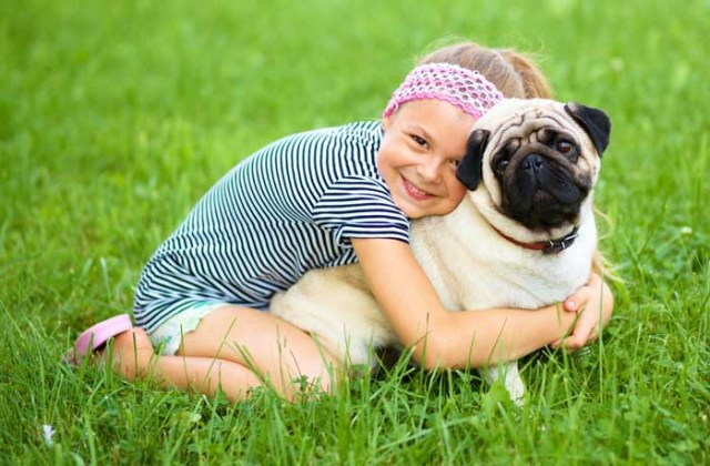 Child is hugging a pug