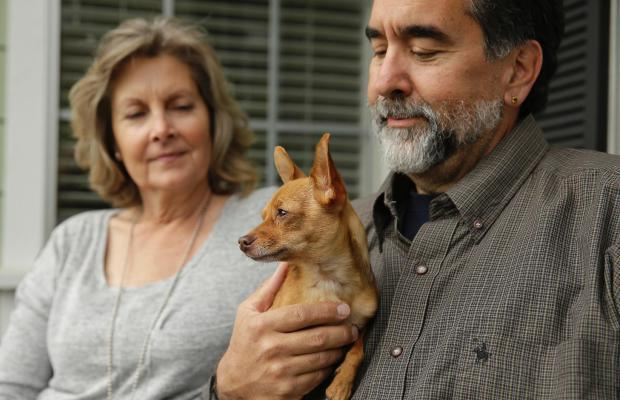 DNA Testing Helps California Shelter Speed Up Adoption Process